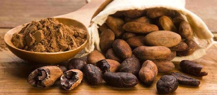 El Cacao remineraliza y sana las caries.