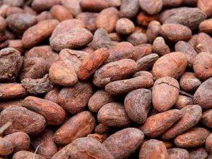 tostado de granos de cacao fase final