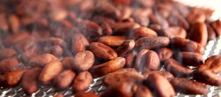 Tostado de granos de Cacao, un poco de magia.